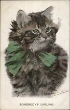 Sweet Long-Haired Gray Kitty Cat Green Ribbon VALTER c1910 Postcard