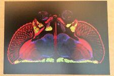 New listing Fruit Fly cross section Science biology genetics art gift postcard great framed