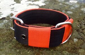BC2 Strong Webbing Dog Collar Lurcher/Greyhound/Bull Terrier
