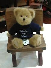 "Vtg Boyds Bears Catoctin High School Maryland Htf Collectable Teddy Retired 8"""