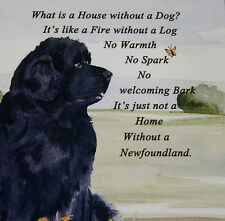 NEWFOUNDLAND DOG HARDBOARD PLAQUE TILE WATERCOLOUR PRINT SANDRA COEN ARTIST