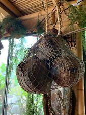 NEW REAL Sack of Coconuts 5 with 6' rope Tiki bar Smokin Tikis fx