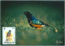 87606 - IVORY COAST - Postal History - MAXIMUM CARD -  BIRDS  1980