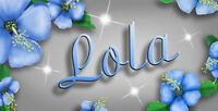 """Blue Hibiscus Decal Bumper Sticker Personalize Gifts Any Name Or Text 3.5"""" x 6"""""""