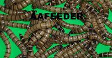 Superworms (Small, Medium, Large)