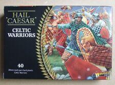 Celtic Warriors - 28 mm (Seigneur de Guerre) - AVE CAESAR - 4 modèles