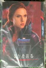 stock Hot Toys Black Widow MMS533 Avengers: Endgame 1/6