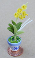1:12 Yellow Orchid In A Pot Dolls House Miniature Flower Garden Accessory 12