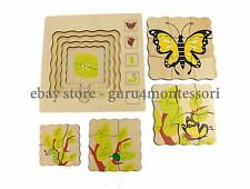 New Biology/ Zoology Puzzles - Butterfly Life-Cycle