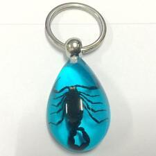 12pc lots fashion huge black scorpion clear blue  key-chains ff-01