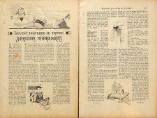 METEO / SUPERSTITIONS METEOROLOGIQUES / DESSINS FELIX LORIOUX / ADP 1917