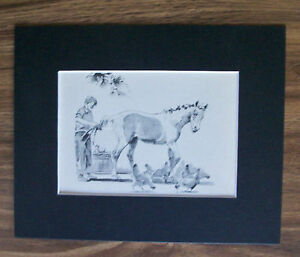 Print Horse Boy Wesley Dennis Pony Colt Braids Mane Tail Bookplate 8x10 Matted