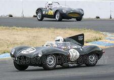 1954 Jaguar D-Type Sports Racing Vintage Classic Race Car Photo CA-1298