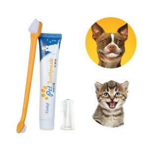 Teeth Oral Care Teeth Cleaning Set Toothbrush and Toothpaste Tartar Tool
