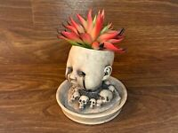 Baby Doll Head Planter with Saucer - White (Distressed)