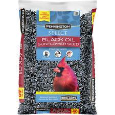 New listing Hot! Pennington Select Black Oil Sunflower Seed Wild Bird Feed, 40 lb. Bag