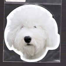 Sheepdog 4 inch face magnet for anything metal