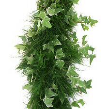 Tree Fern & Ivy Garland / 10 ft section / Wholesale / Grower Direct