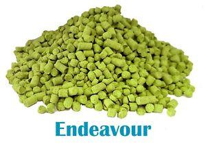 Endeavor (2019 UK Harvest) - Fresh Pellet Hop  - Home Brewing - Hop -Sameday P&P