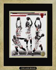 Chicago Bulls 2014 Starting Lineup Framed Photo W/plate