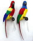 12 inch Feather Parrot Bird, Set of 2, Handmade, Assorted Colors