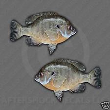 Bluegill Sticker Fishing Decal sunfish pond bass
