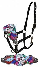 Showman bronc halter with painted sugar skull with feather head dress design