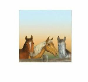 """Sugartree 12 x 12"""" 2 sheets scrapbooking paper - 3 horses heads drawing"""