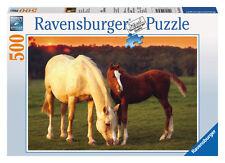 Ravensburger 14347 - schöne Pferde 500 teile Puzzle