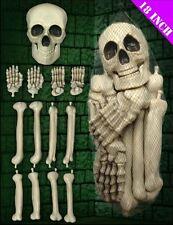 Casa Embrujada Halloween Esqueleto XL moldeada partes del cuerpo cráneo Accesorios del partido