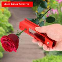 Dorn-Entferner Holly Rose Stamm Stripperin Floristik Metall Garten Werkzeug DE