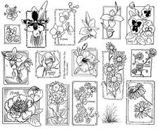 Unmounted Rubber Stamps Sheets, Flowers Floral, Orchid, Orchids, Pansy, Daisies