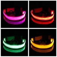 Hot Glow LED Dog Pet Cat Flashing Light Up Nylon Collar Night Safety S M L Size