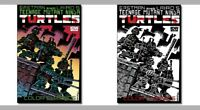 IDW Mexico Teen Mutant Ninja Turtles #1  Color Classic #1 Color & Sketch Covers