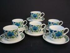 MIDWINTER SPANISH GARDEN 6 X CUPS AND SAUCERS
