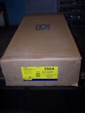 NEW SQUARE D 250 AMP CIRCUIT BREAKER ENCLOSURE 600 VAC J250S