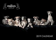 Just Whippets Rescue 2019 Calendar