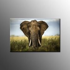 FRAMED Canvas Art Prints Big Elephant Canvas Painting Home Wall Art Room Decor
