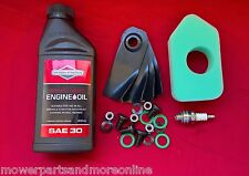 Victa 18 Inch Lawn Mower Service Kit Oil Filter 698369 Plug & Blades Ca09506s