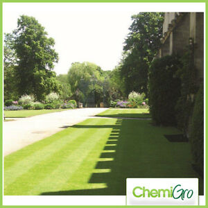 2 KG FORMAL REDUCED MOWING GRASS SEED