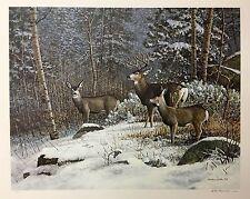 Scott Zoellick Backwoods Deer  Print Signed and Numbered  24 x 16 Plus Margins