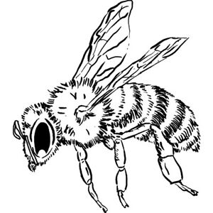 'Honey Bee' Unmounted Rubber Stamp (RS025389)