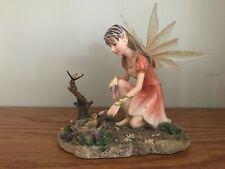 Faerie Glen - Curarise Fg894 Retired Collectible Figurine