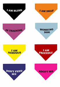 Safe Aware Personalised Printed Quality Dog Pet Tie Bandana 8 Colours 3 Sizes