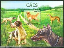 GUINEA BISSAU  2013  DOGS   GOLDEN RETRIEVER SOUVENIR SHEET MINT NH