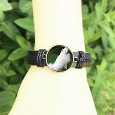 mm Glass Cabochon Leather Charm Bracelet American Eskimo Dog Black Bangle 20