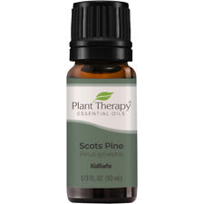Plant Therapy Scots Pine Essential Oil 100% Pure, Undiluted, Natural