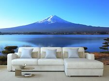 Full Wall Mural Lake side view of Mountain Home Photo Wallpaper Poster Print 3D