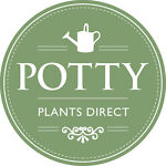Potty plants and lovely things