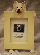 """American Eskimo"" Dog Picture Frame"